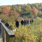 Get Your Blood Pumping With Walktober, Oct. 20-23