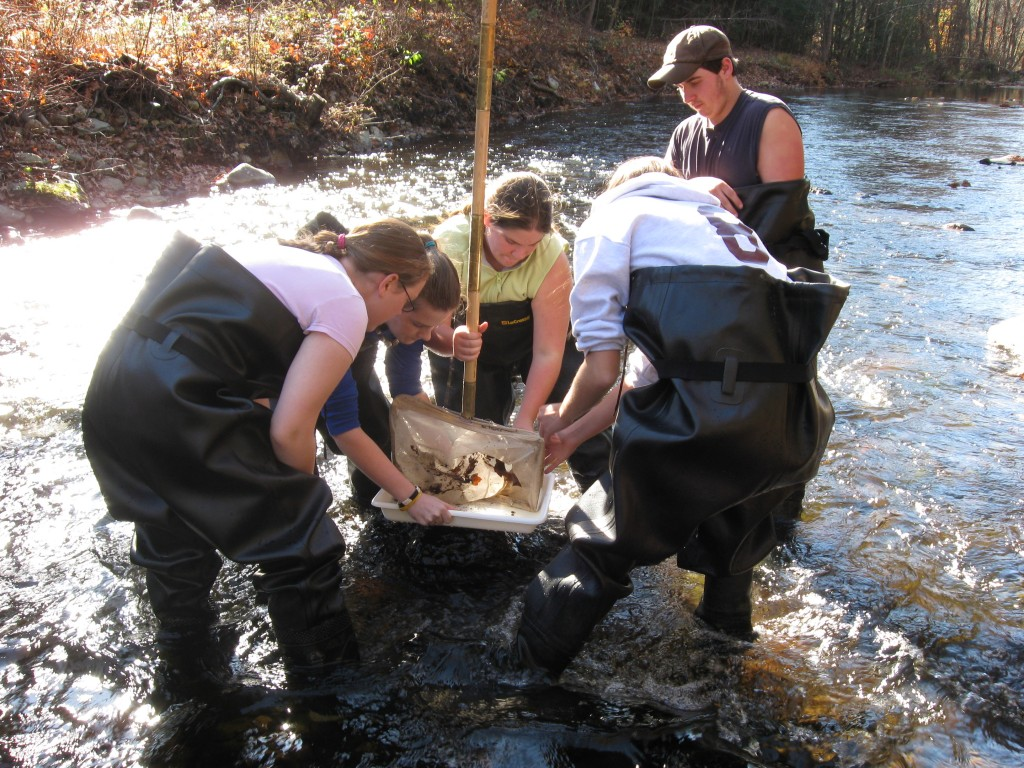 Killingly VoAg students monitor for stream-living critters. Photo by K. Couture.