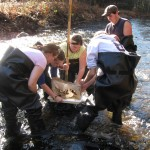 Volunteers Needed to Monitor The Last Green Valley's Waters!