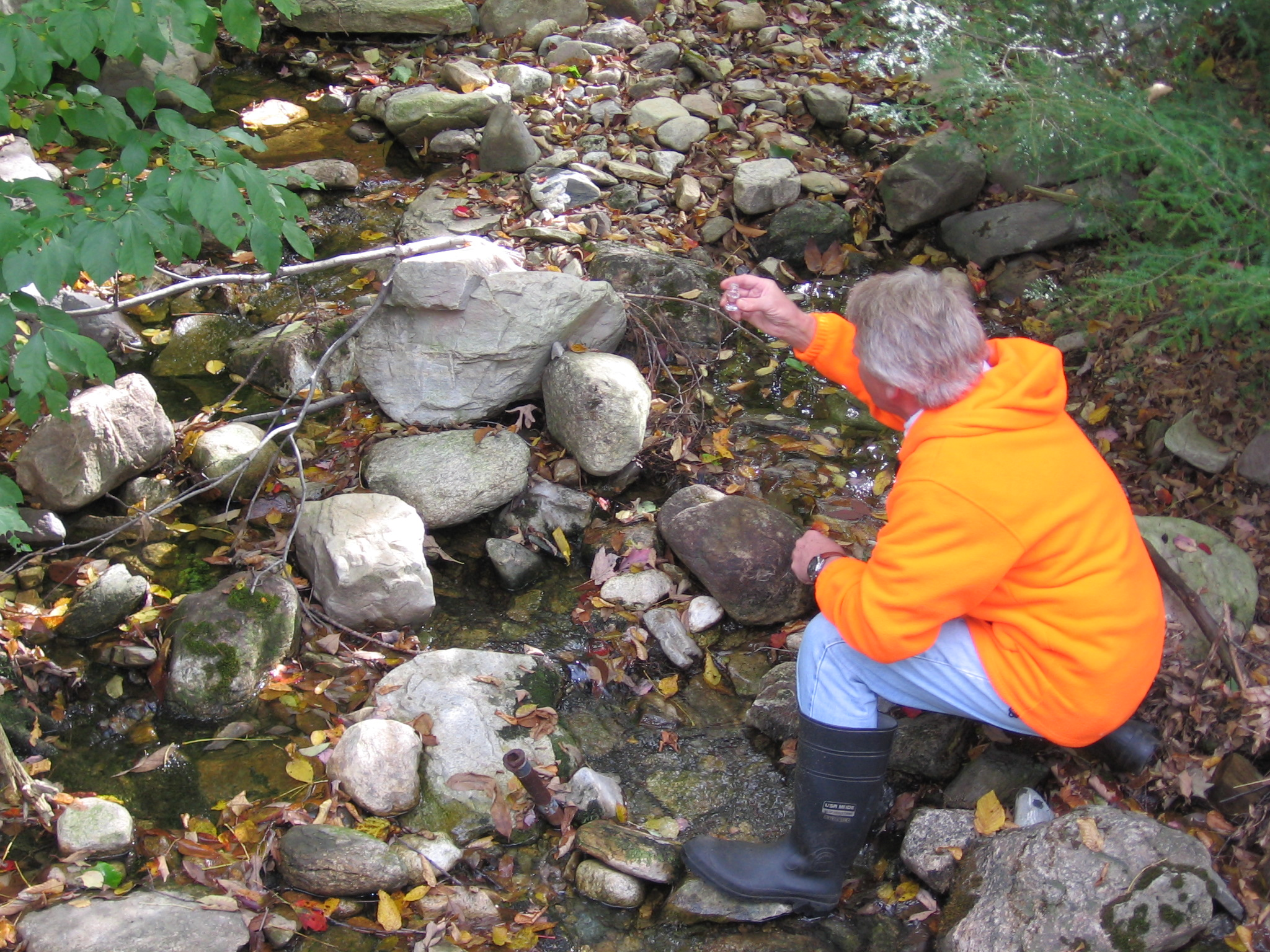 Water quality monitoring in a stream