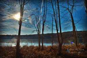 James-L-Goodwin-State-Forest-01012015_SH1