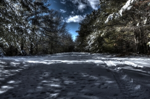 A piece of dark-world under the blue skies of a snow filled winter in The Last Green Valley. Photo by A. Iamartino.