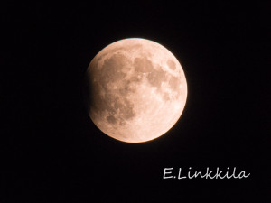 The Lunar Eclipse begins its work in The Last Green Valley. What a sight in our dark skies! Photo by E. Linkkila.