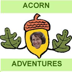 AcornAdventure-page