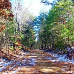 TLGV January Member Program – Snowshoe Hike on the Air Line Trail to the Tri-State Marker