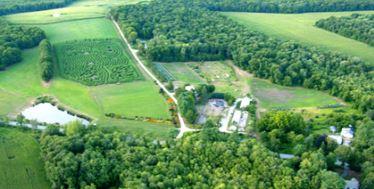 Forth Hill Farm