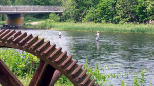 Fly fishing happens in The Last Green Valley, thanks to our many rivers, lakes and ponds. The Shetucket River in Sprague, CT welcomed in these fishermen!