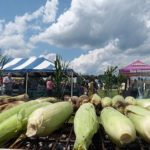 The Farmer's Cow Summer Corn Roast & Farm Tour