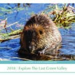 Explore The Last Green Valley – Photo Contest Winners Announced