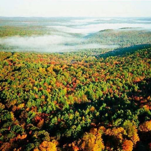 Autumn in the Southern New England Heritage Forest