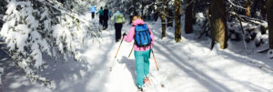 Snow Shoe 2