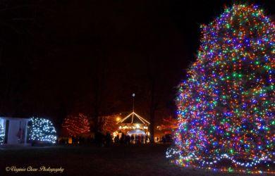 V Chase-Davis Park Christmas Lights-December 2015-Killingly