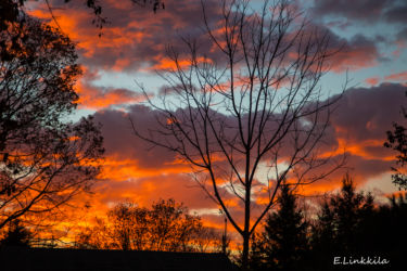 e-linkkila-brilliant-sunrise-november-2016-hampton